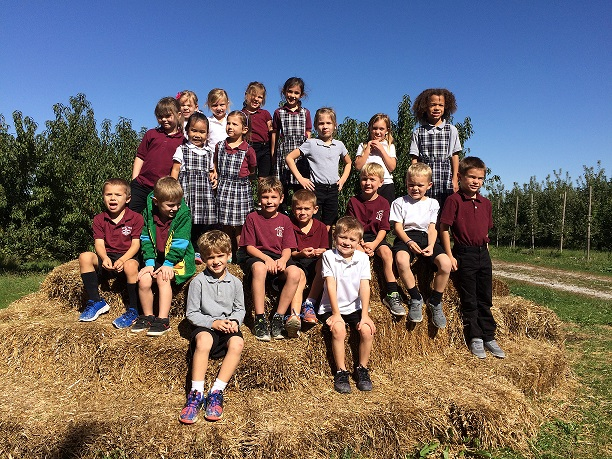 Kindergarten's Field Trip to the Apple Orchard
